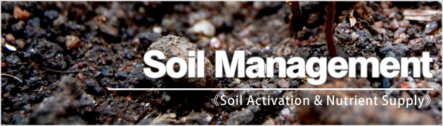 Organic cultivation stage1 soil management geocare for Soil king productions